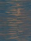 2014, huile, 18 × 14